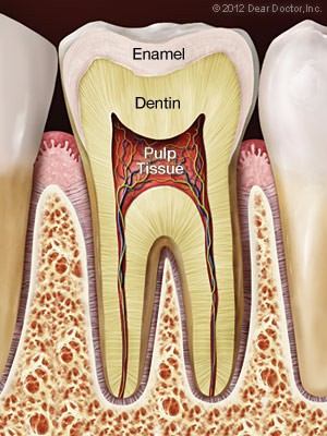 Root Canal Treatment Leslie J Green Dmd Llc King Of Prussia Pa